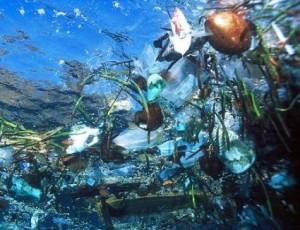 mar contaminado 1